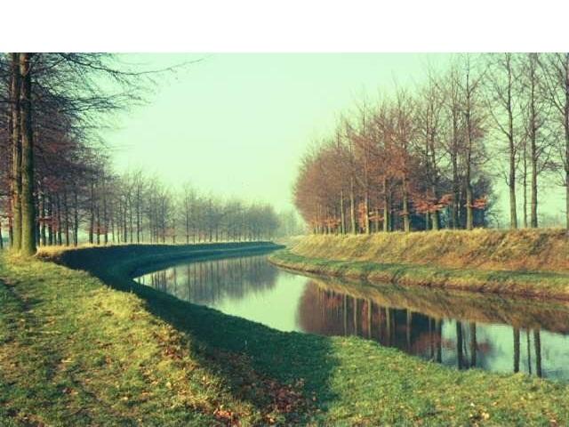 Schipbeek